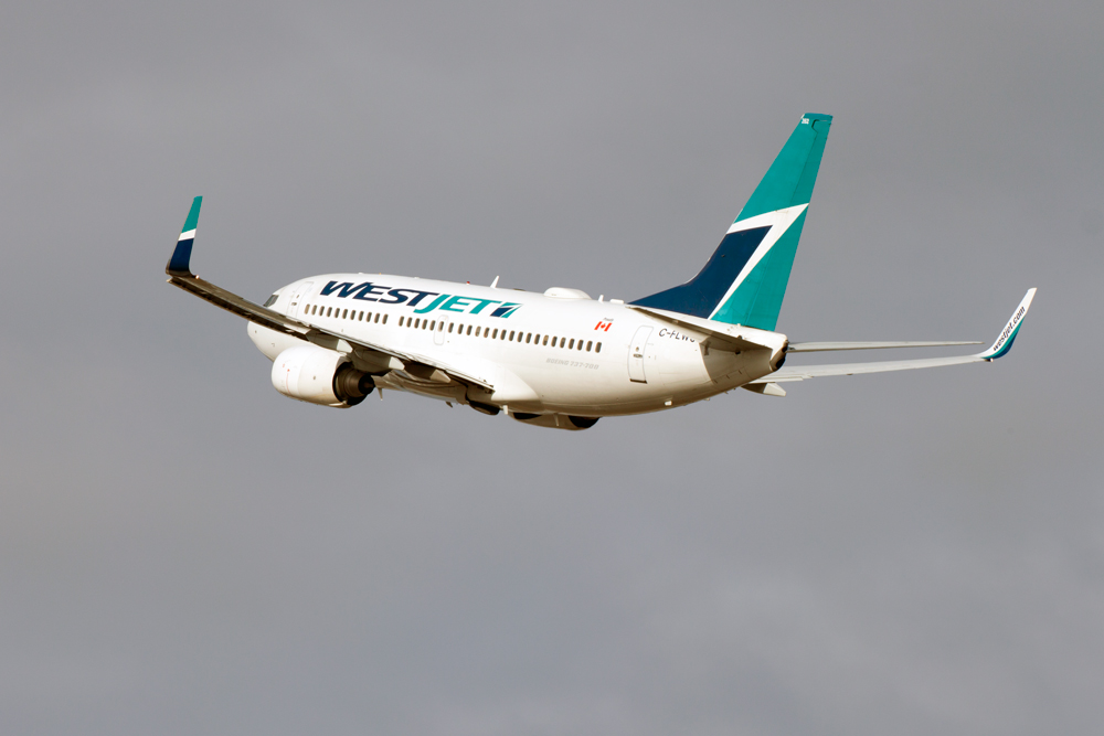 WestJet to suspend Ottawa-Halifax flights