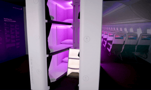 Air New Zealand Skynest